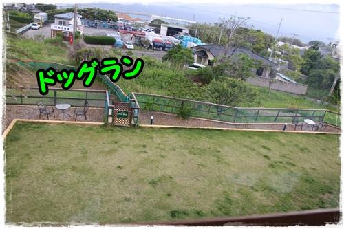 IMG_2426.jpg