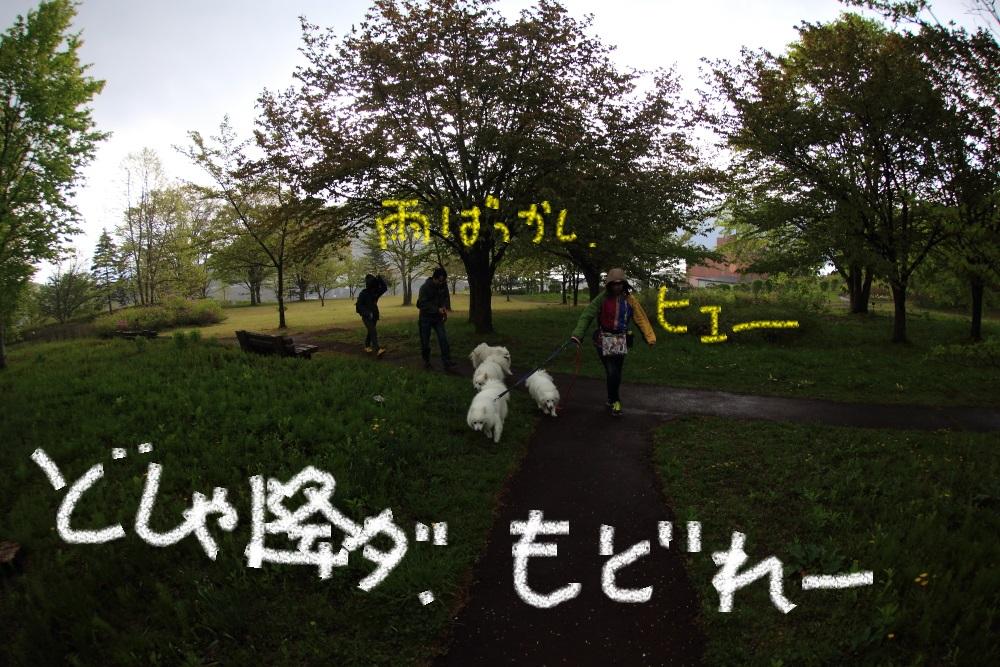 2_201405102231400cd.jpg
