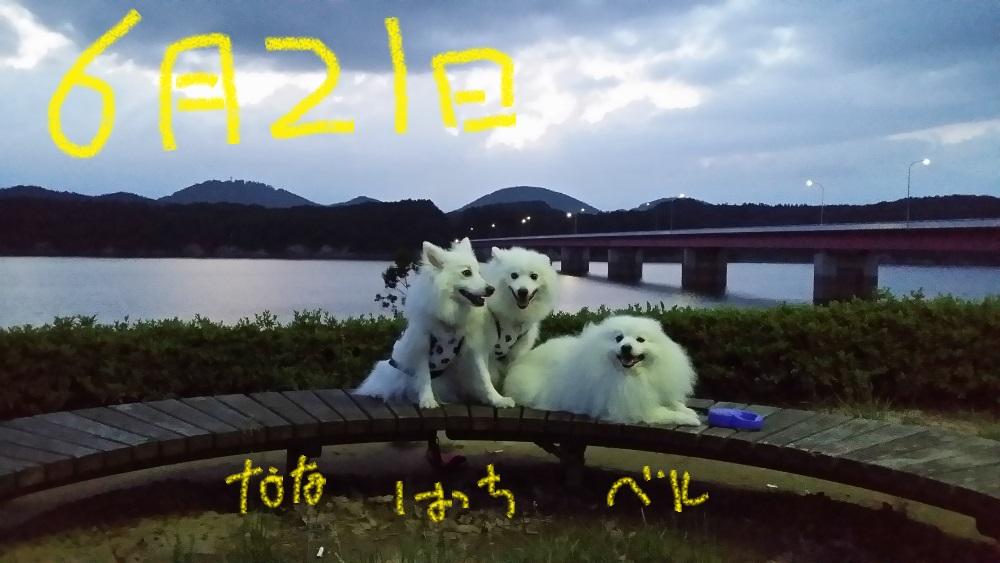 2_201407080623544c4.jpg