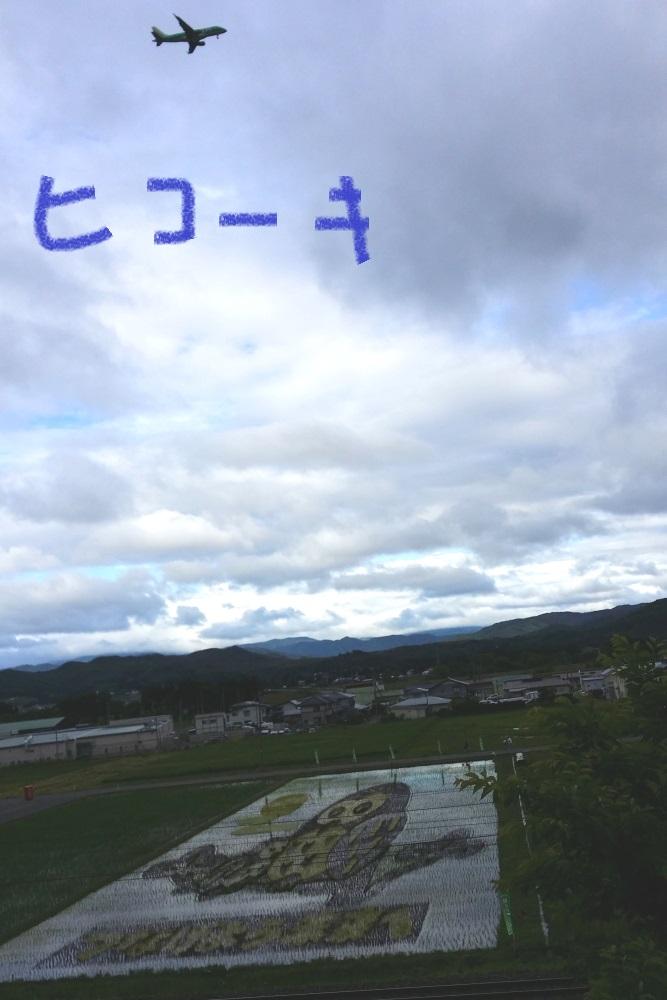 DPP_7601.jpg