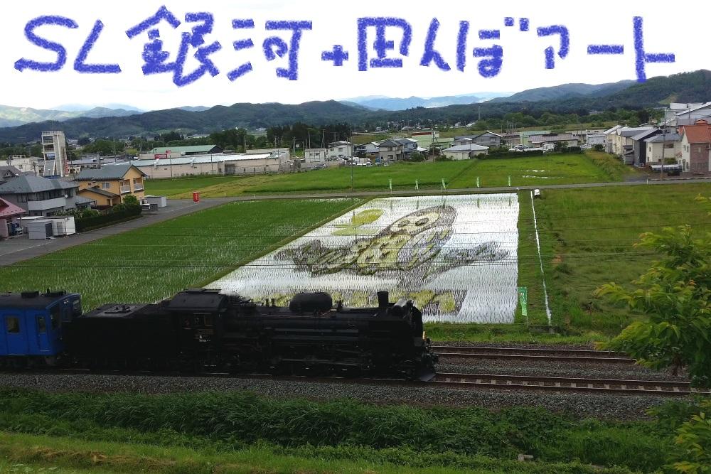 DPP_7603.jpg