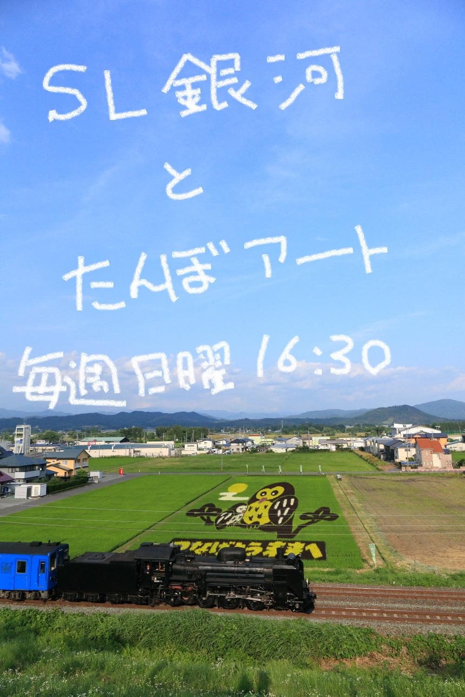 DPP_7645.jpg