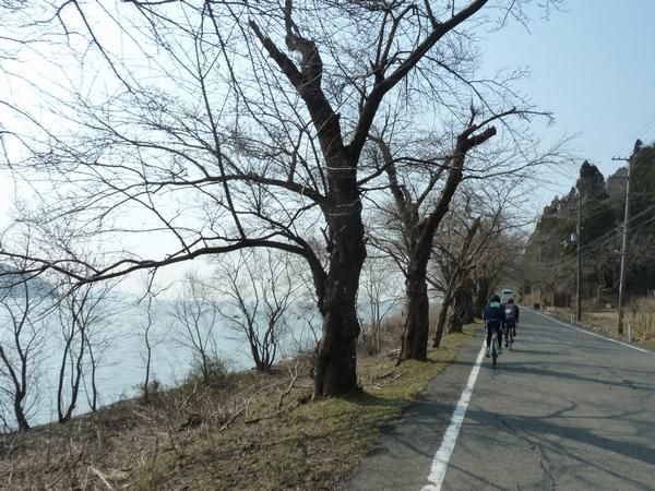biwaichi2014-16.jpg