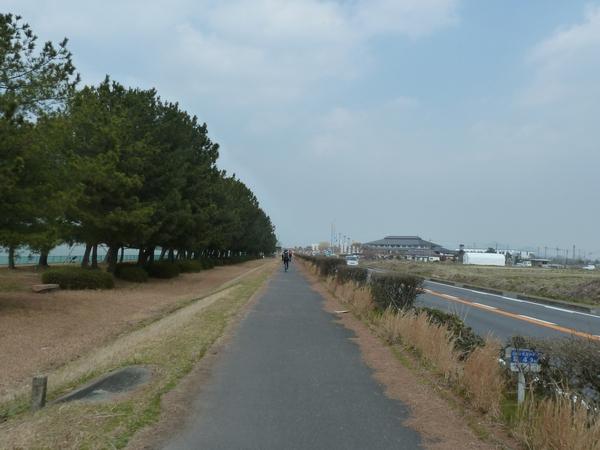 biwaichi2014-30.jpg