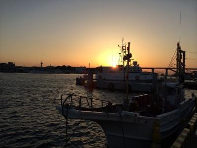 三崎港の日の出