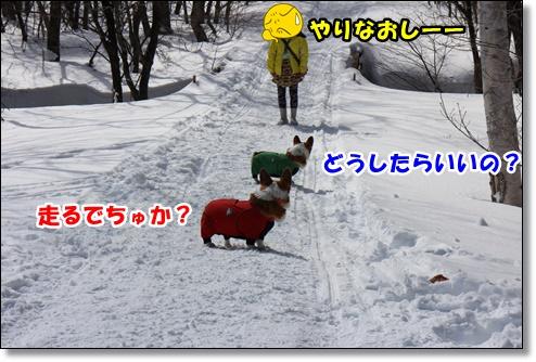 IMG_1543.jpg