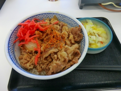 吉牛 並(ご飯少なめ)+おしんこ