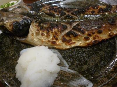 魚角 (6)