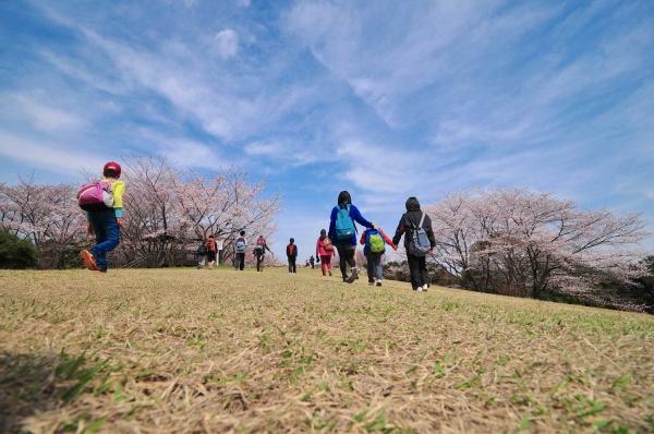 20140401aonoyama2611.jpg