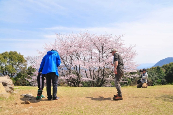 20140401aonoyama2765.jpg