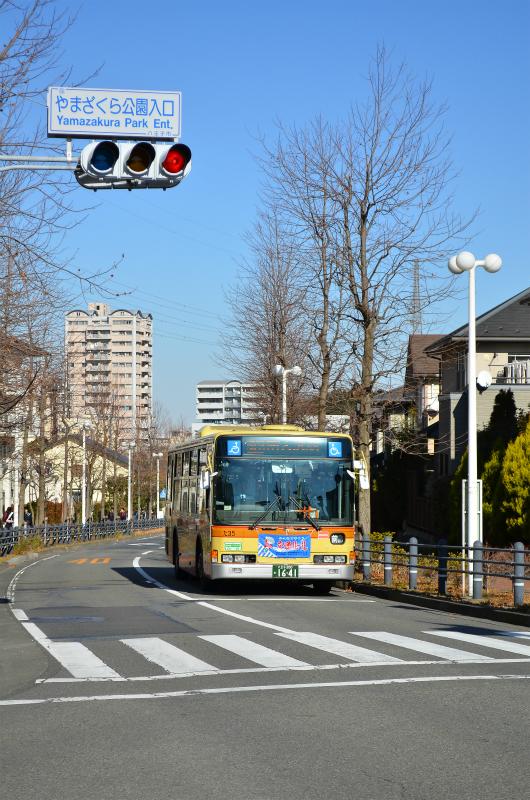 DSC_9075.jpg