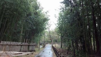 伊那谷の古道 (2)