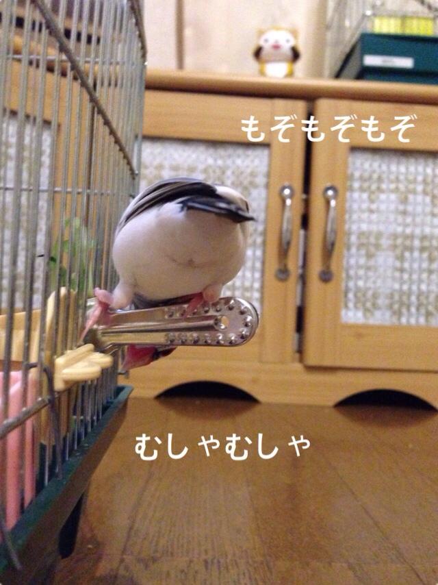 fc2blog_20140529214001312.jpg