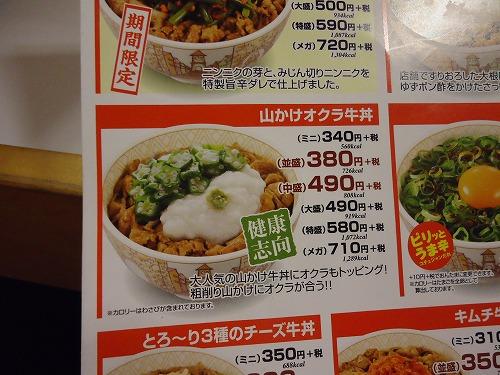 1408sukiyayamakake004.jpg