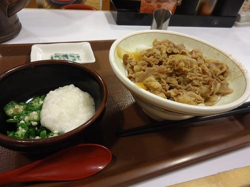 1408sukiyayamakake005.jpg