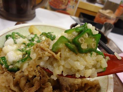 1408sukiyayamakake008.jpg