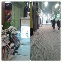 2014-2-14大雪