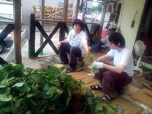 2014-8枝豆収穫