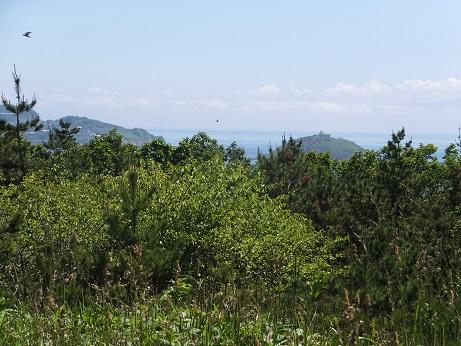 白鳥湾展望台散策路8