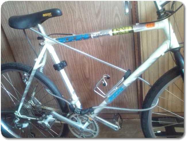 自転車の 自転車 フレームサイズ 小さい : こんなワイヤーロックの付け方 ...