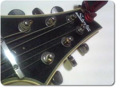 シェクターギターダイヤモンドシリーズ2