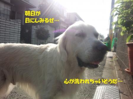 DSC_0414+-+繧ウ繝斐・[1]_convert_20140812180801