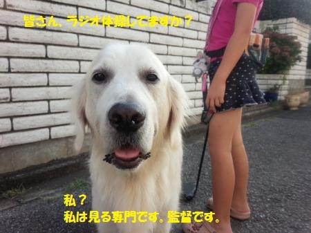 DSC_0417+-+繧ウ繝斐・[1]_convert_20140812180551