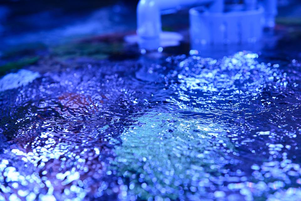 20140427-DSC_8323.jpg
