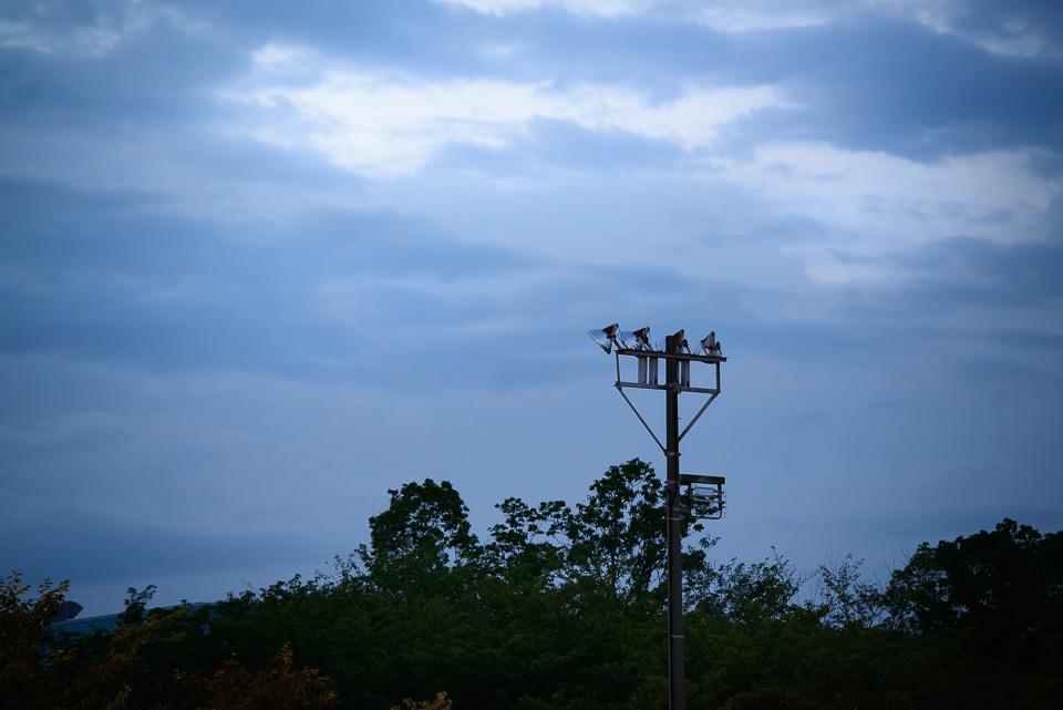 20140806-DSC_4650.jpg