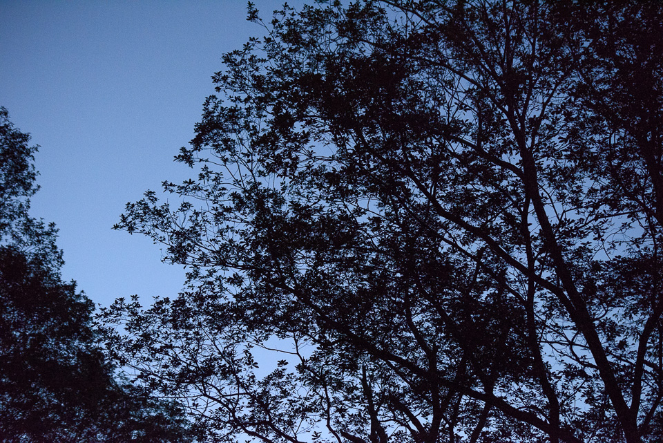 20140913-DSC_1633.jpg