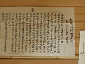 夏の鎌倉 睡蓮と写経とたこせんべい
