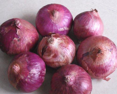 紫たまねぎ