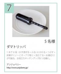 ダマトリッパ_読者プレゼント1