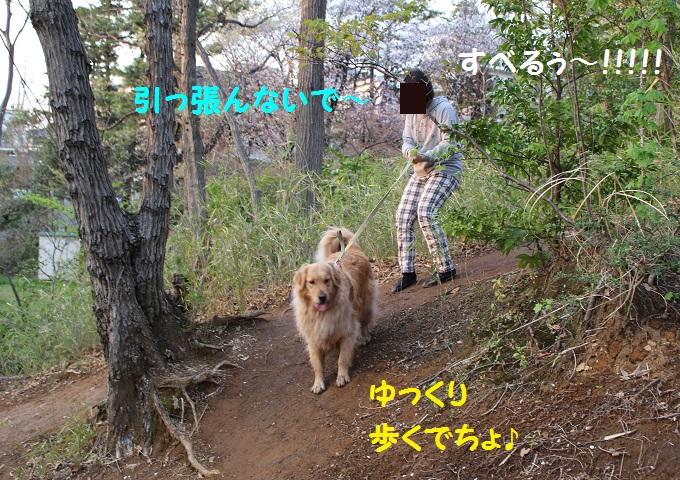 IMG_0091.jpg
