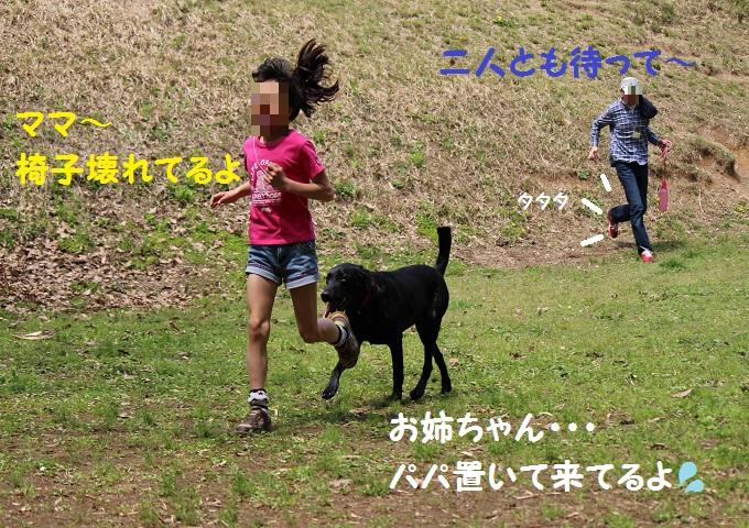 IMG_0519.jpg