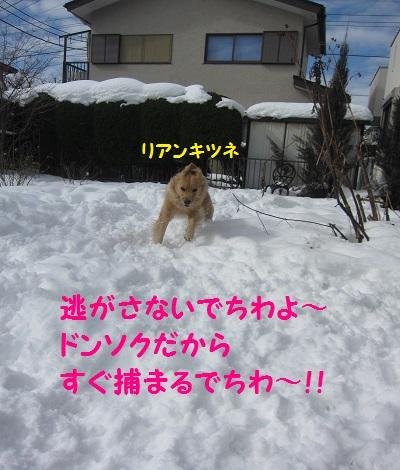 IMG_3012.jpg
