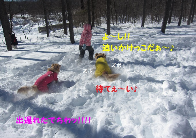 IMG_3249.jpg