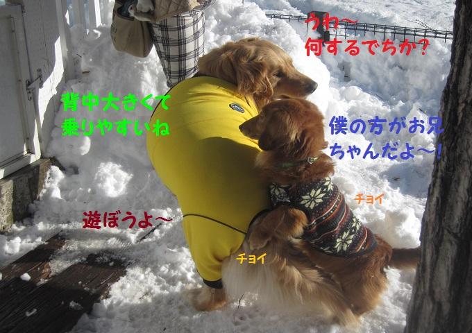 IMG_3381.jpg