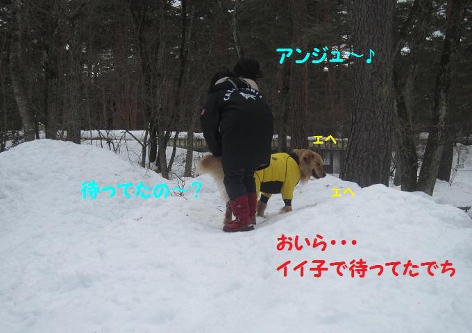 IMG_3434.jpg
