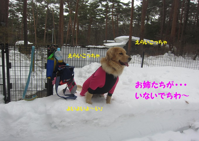 IMG_3455.jpg