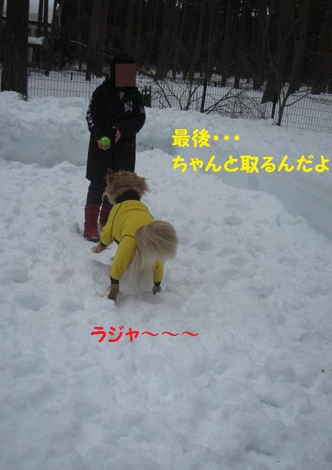 IMG_3463.jpg