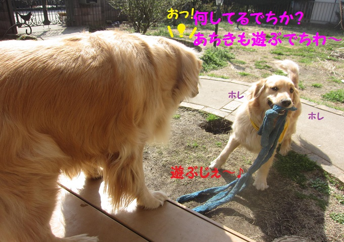 IMG_3537.jpg