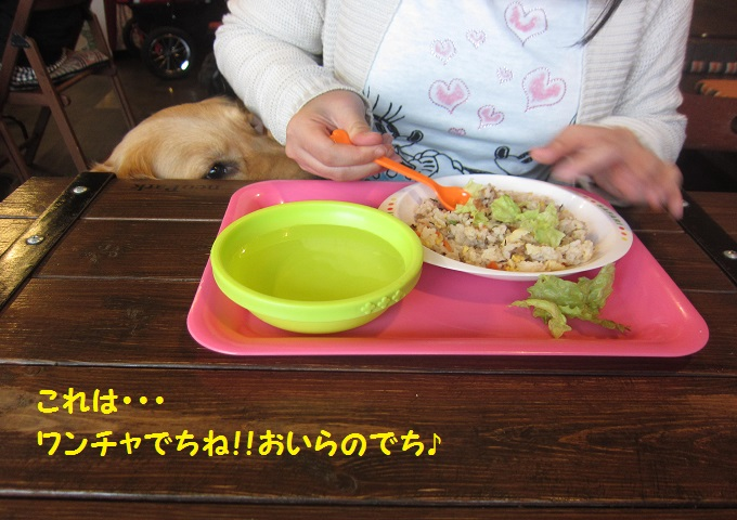 IMG_3647.jpg
