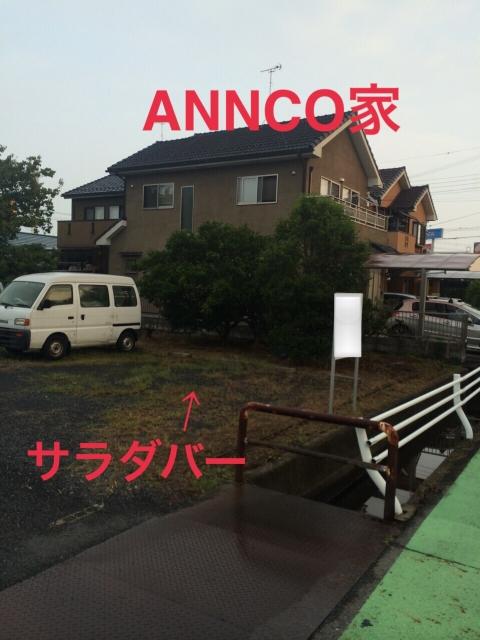 ANNCO_559