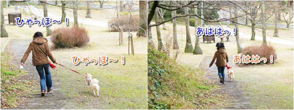 20140306_3.jpg