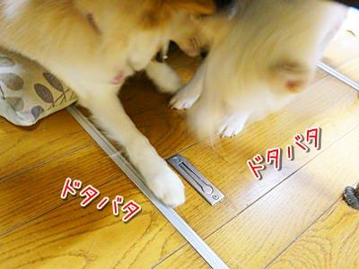 20140509_3.jpg