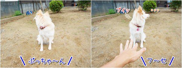 20140629_2.jpg