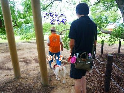 20140709_3.jpg