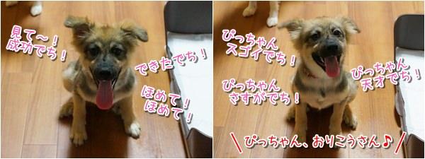 20140907_6.jpg