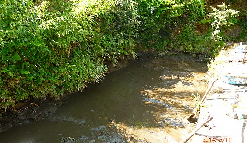 s-ため池の泥浚い20140511